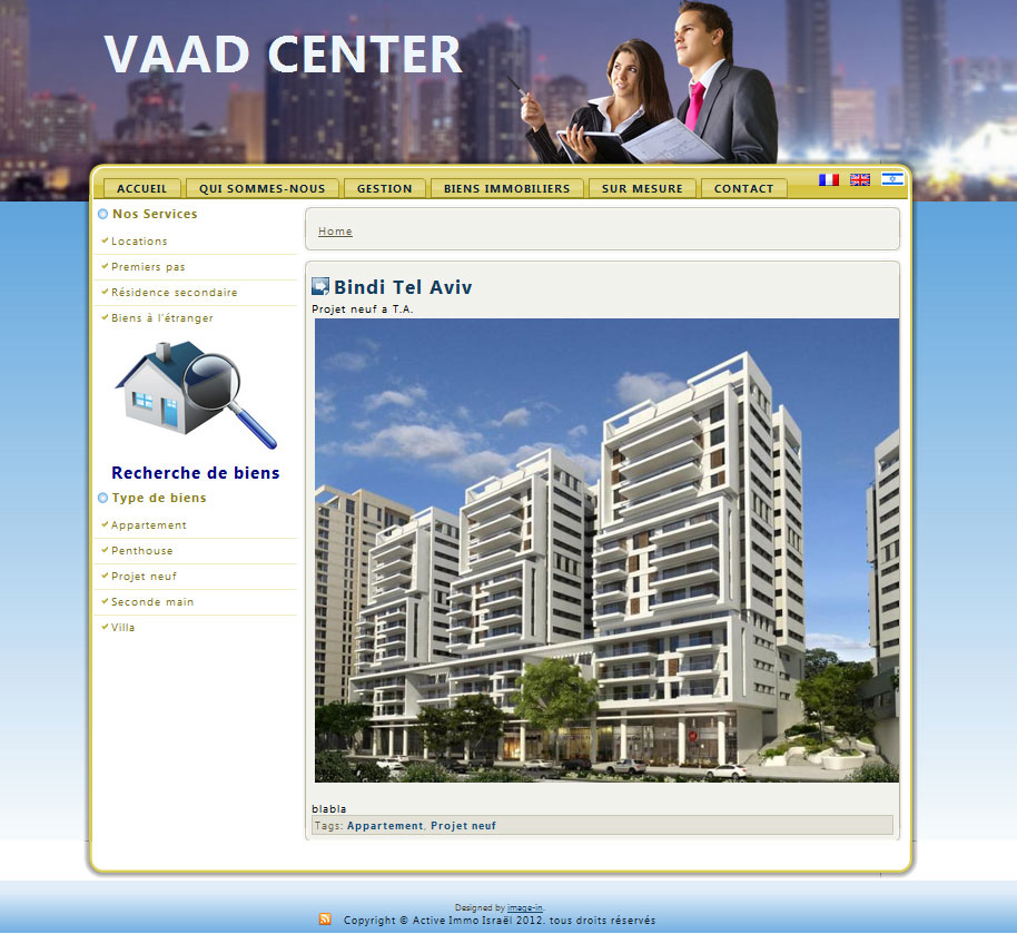 Vaad center Real Estate web development