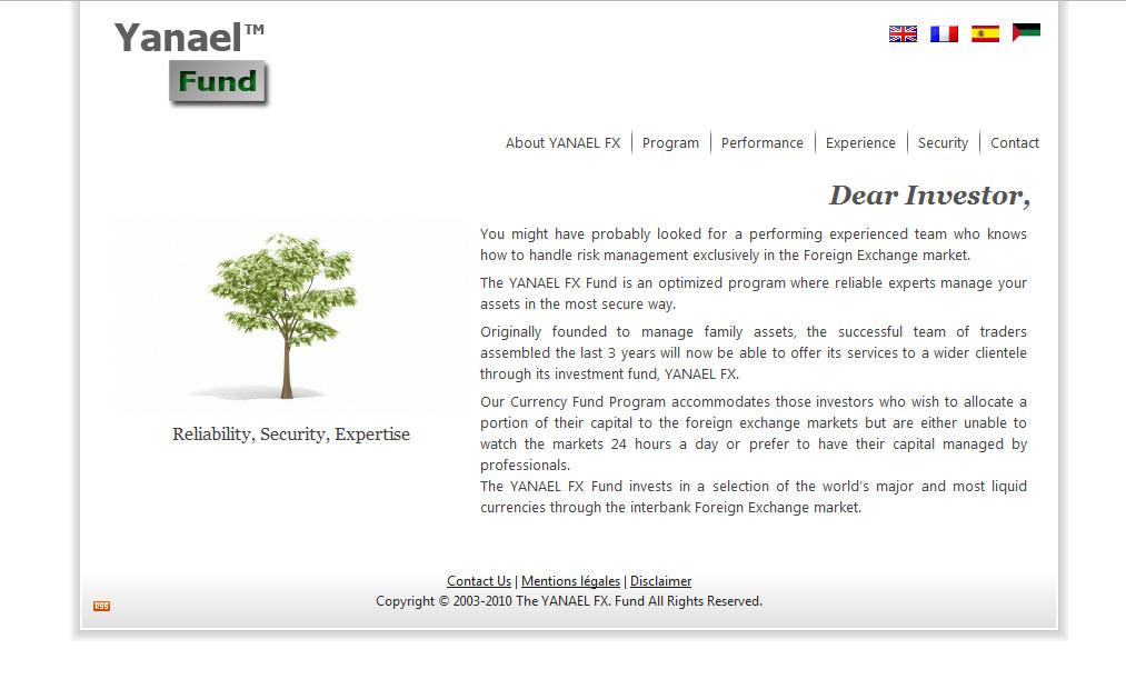 Yanael FX web design